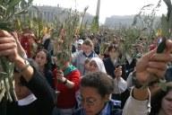 Tanti i fedeli partecipanti alla liturgia delle Palme
