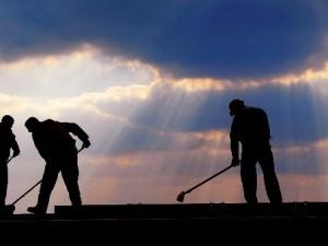 Il lavoro in campagna, una delle professioni in cui i voucher hanno spopolato